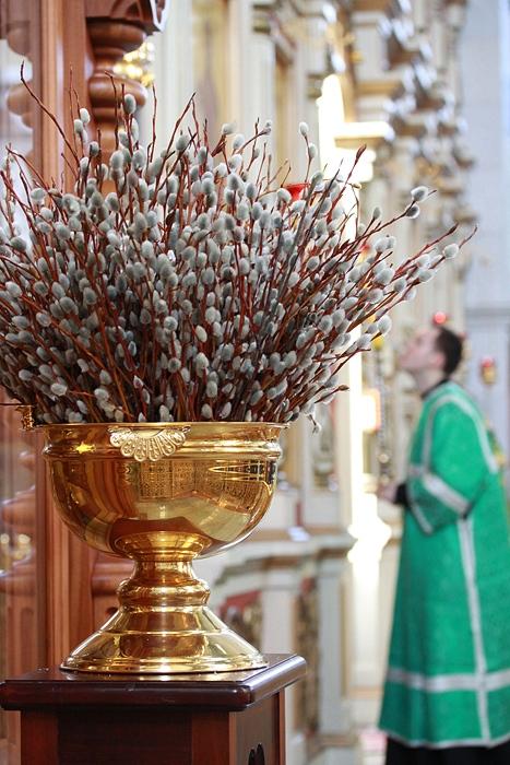 Что делают с вербой освященной на вербное воскресенье 173